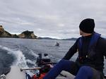 Takacat LiteX Katamaran-Schlauchboot mit offenem Heckspiegel